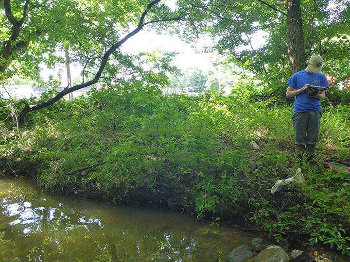 A man stands next to Henson Creek with tablet computer in hand.