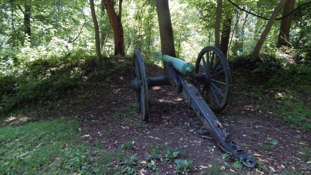 Photo of a 12 pounder howitzer behind forest covered earthworks