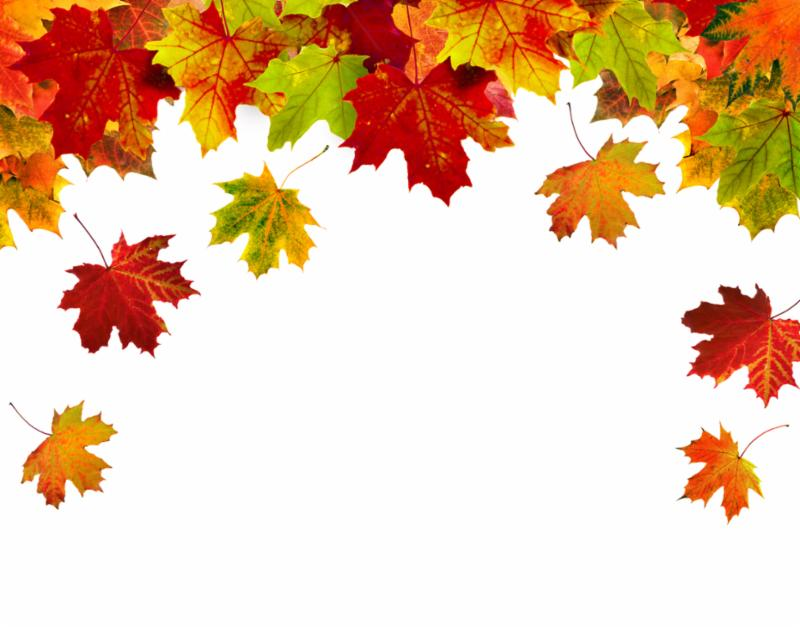 header_autumn_leaves.jpg