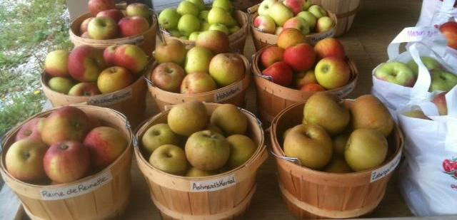 Heirloom Apples Store