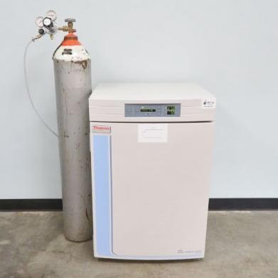 Thermo Scientific 3110 CO2 Incubator