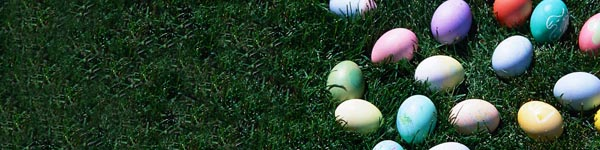 easter-eggs-grass-header.jpg