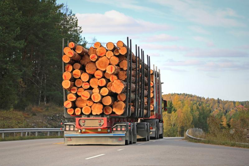 Logging truck on the road