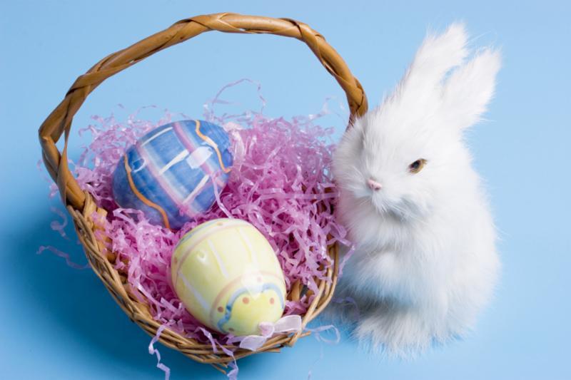 bunny_basket_eggs.jpg