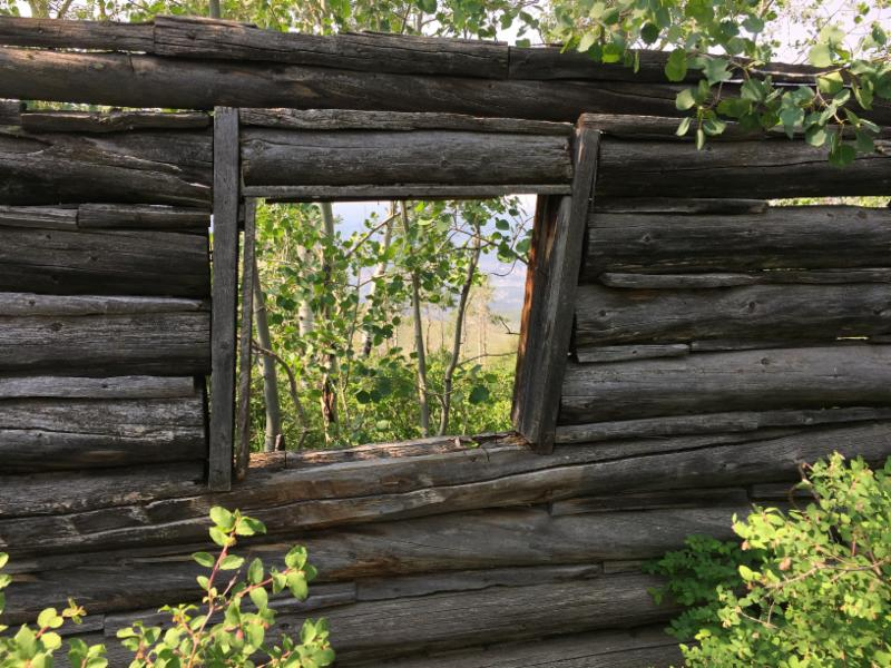 Buchholz Winfrey Ranch Homestead Cabin Photo