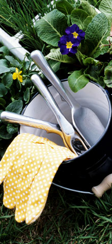 gardening-bucket.jpg