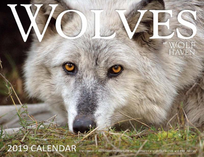 Free 2019 Wolf Haven Calender with orders of _25 or more