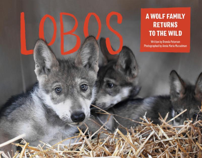 Lobos book cover