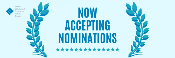 Now Accepting Nominations for the WOCN Society's 2020 Election