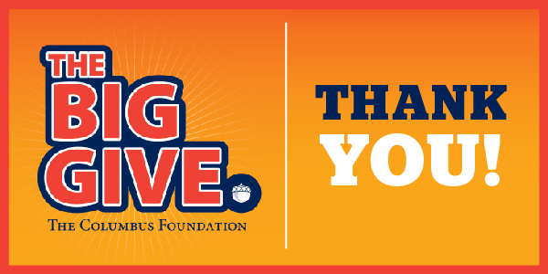The Big Give graphic
