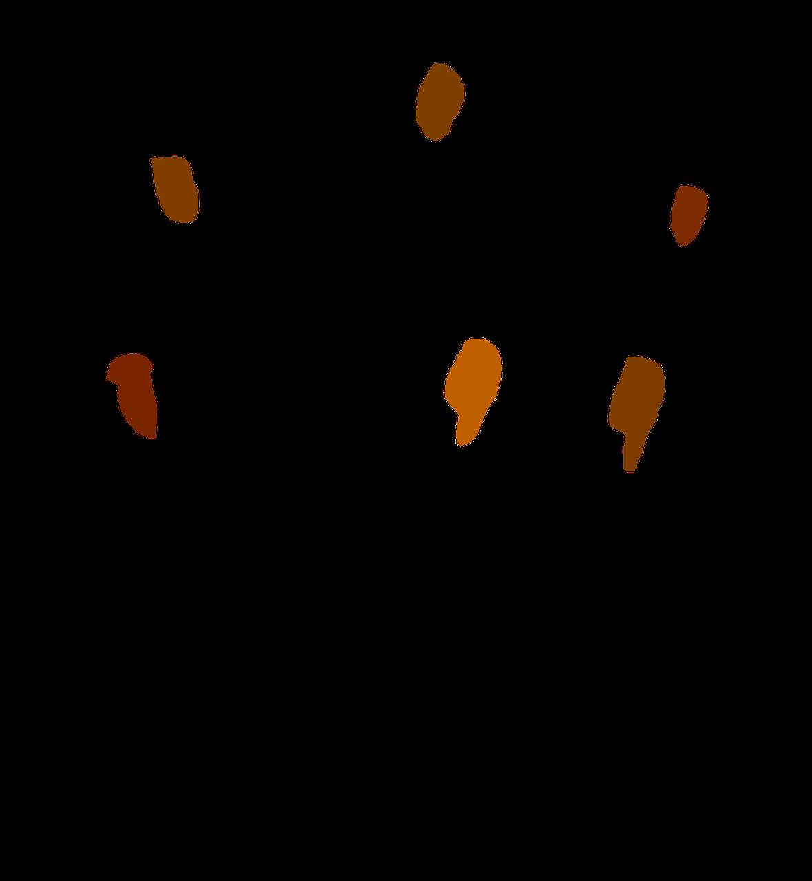 choir graphic