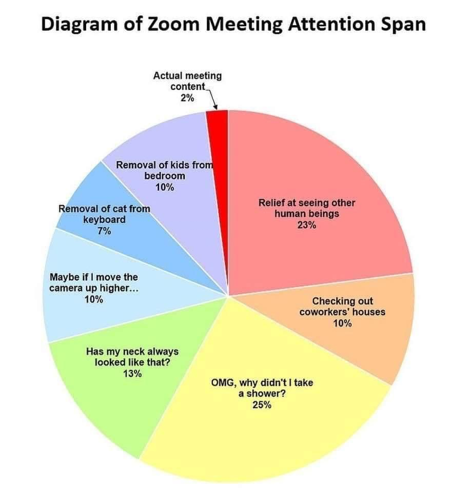Zoom meeting attention span