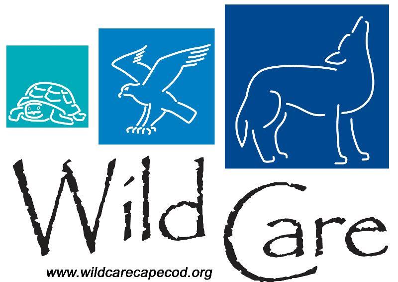 Wild Care Logo 2011
