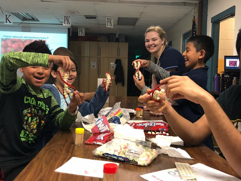 Baltimore Curriculum Project August 2018 Newsletter