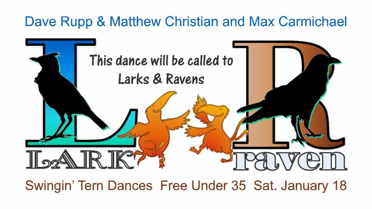 Tern Larks Ravens Max