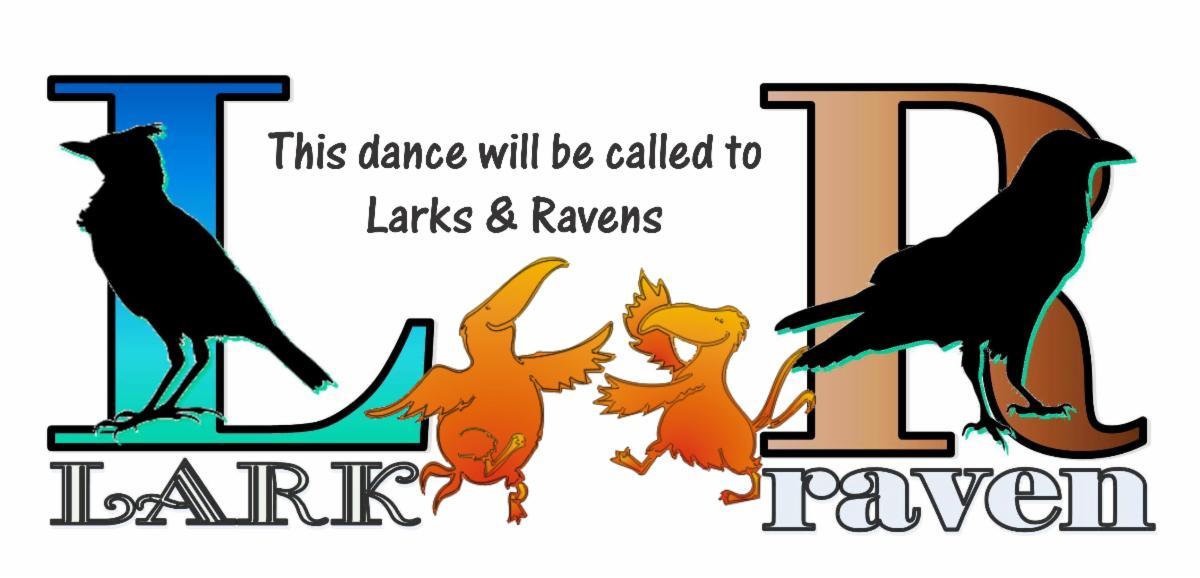 Tern Larks and Ravens