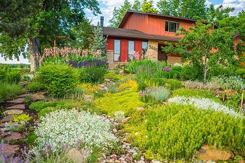 Garden In A Box Home