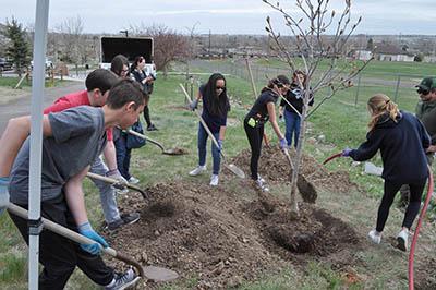 Ulysses Skate Park Tree Planting