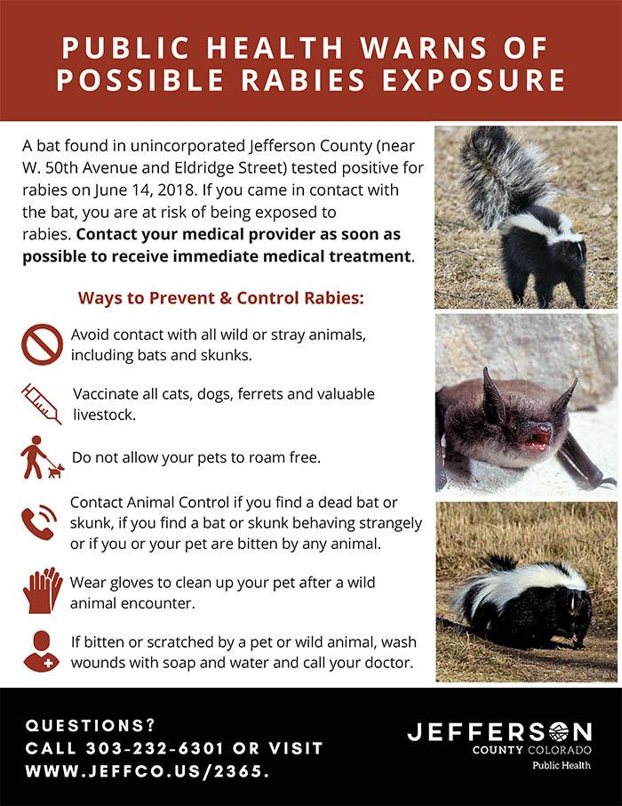 Rabies found in JeffCo