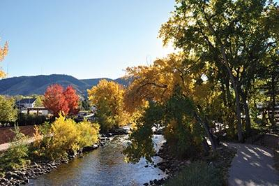 Fall colors on Clear Creek