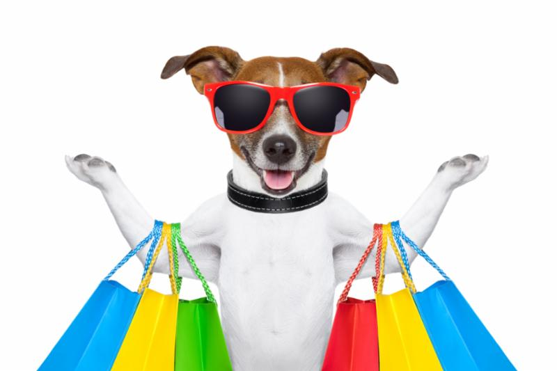 shopping_dog.jpg