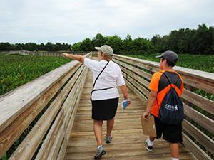people on a boardwalk