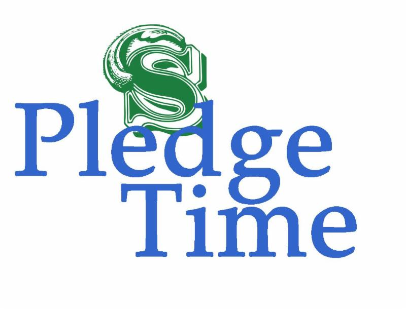 Make a pledge of support