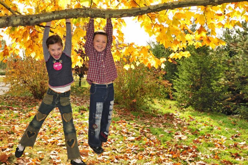two_kids_on_tree.jpg