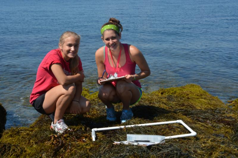 Transect interns!