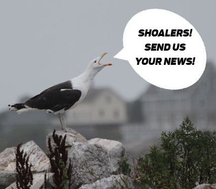 Gull call on Smuttynose