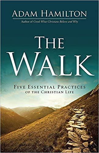 The Walk Bookcover
