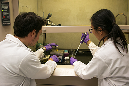 Assistant Professor of Physics Riccardo Comin  and Diamond Middle School Physical Science teacher Wendy Moy work at a hood on organometallic halide perovskites during summer 2018.