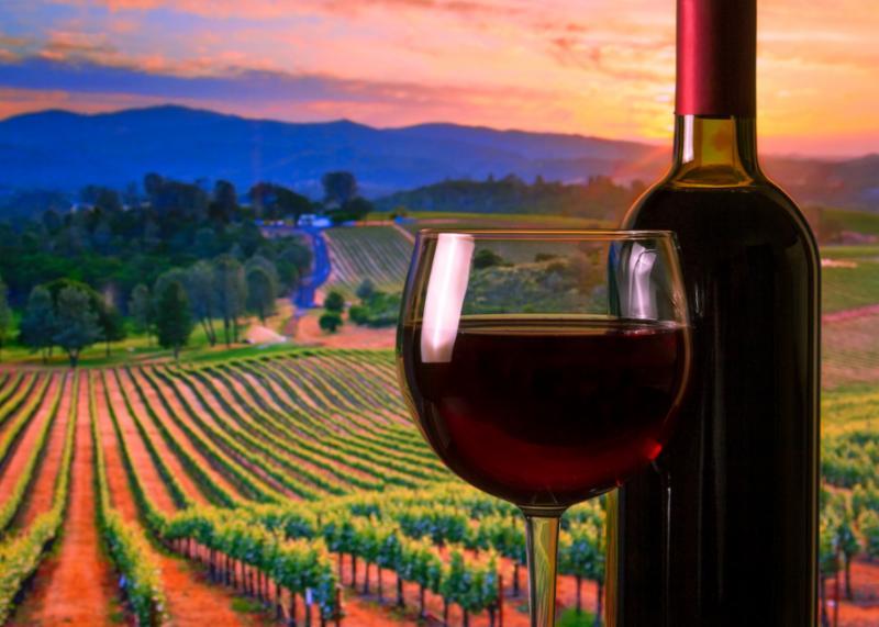 wine_fields.jpg