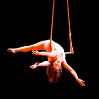 A trapeze artist performing