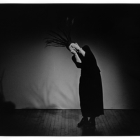 A photography by Dona Ann McAdams