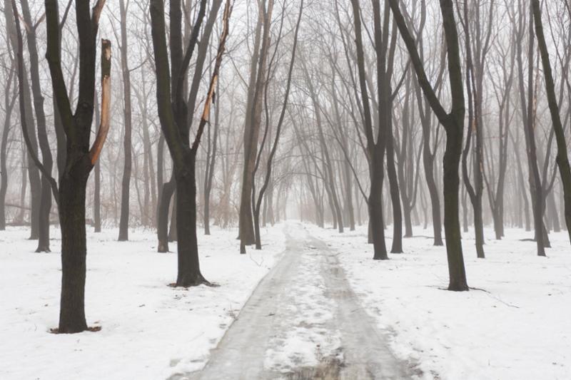park_snow.jpg