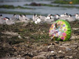 Balloon on the beach