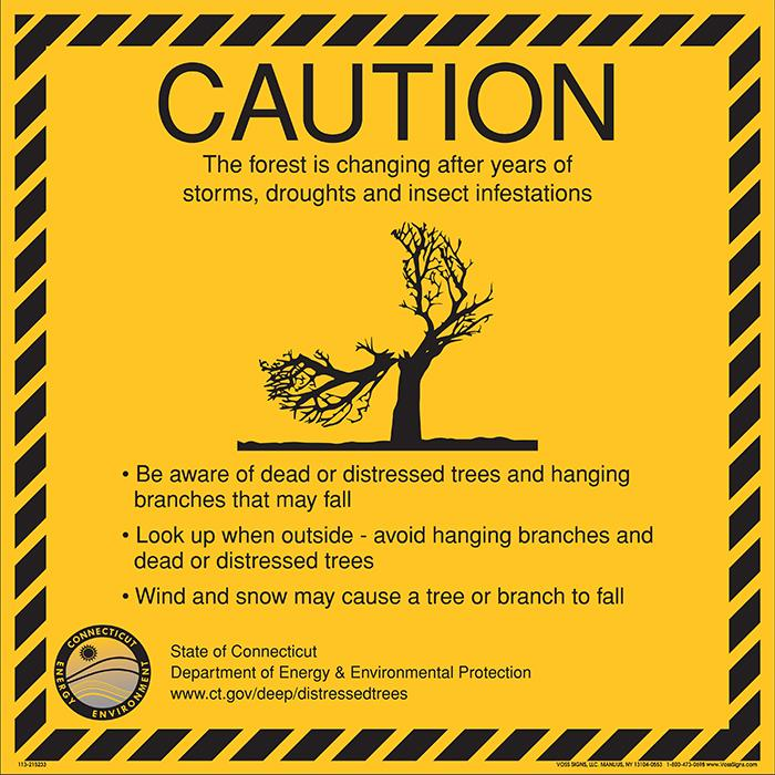 Caution - be aware of dead or distressed trees