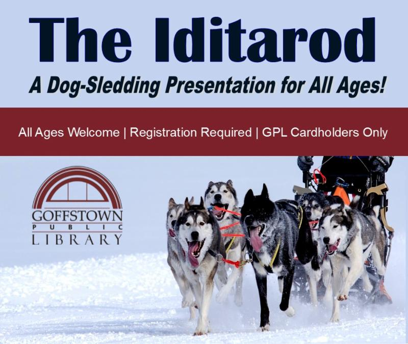 Meet the sled dog Noggin and learn about the Iditarod at the Library.