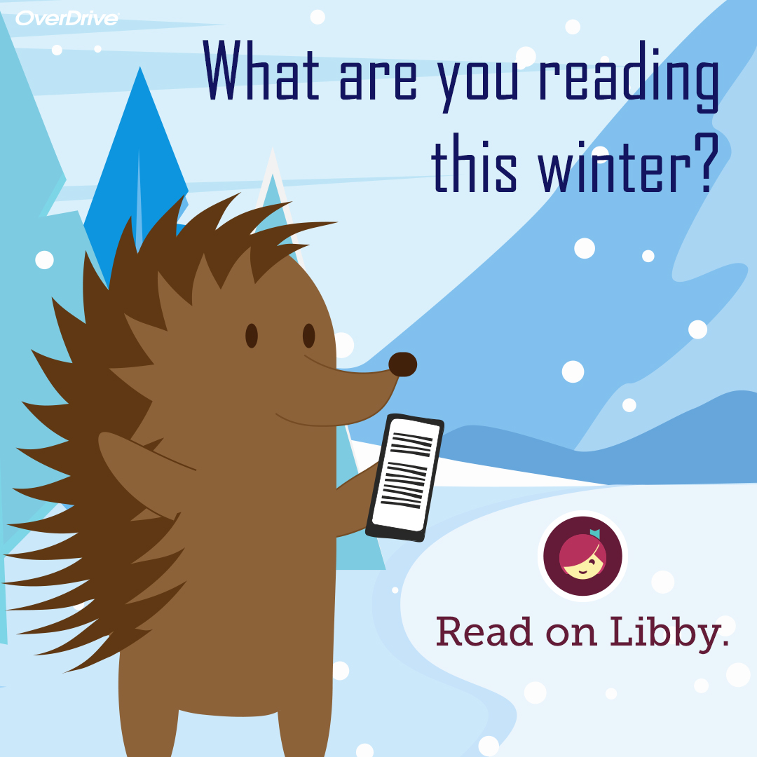 What Are You Reading this Winter on Libby
