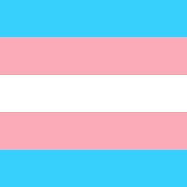Image of transgender flag of blue pink and white strips.
