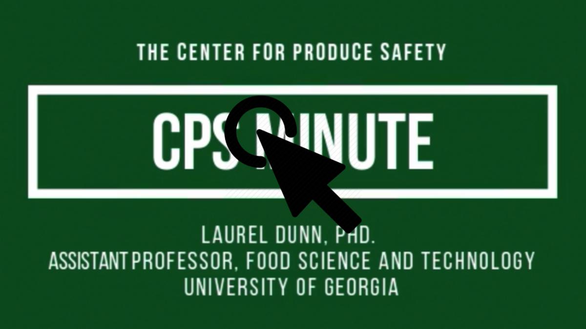 Lauren Dunn CPS Minute