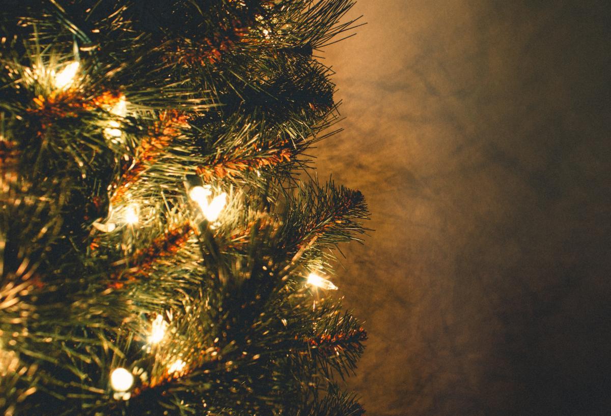 Photo of Christmas tree lights by Jeswin Thomas via Pexels.