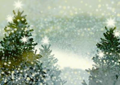 sparkling-snowy-trees.jpg