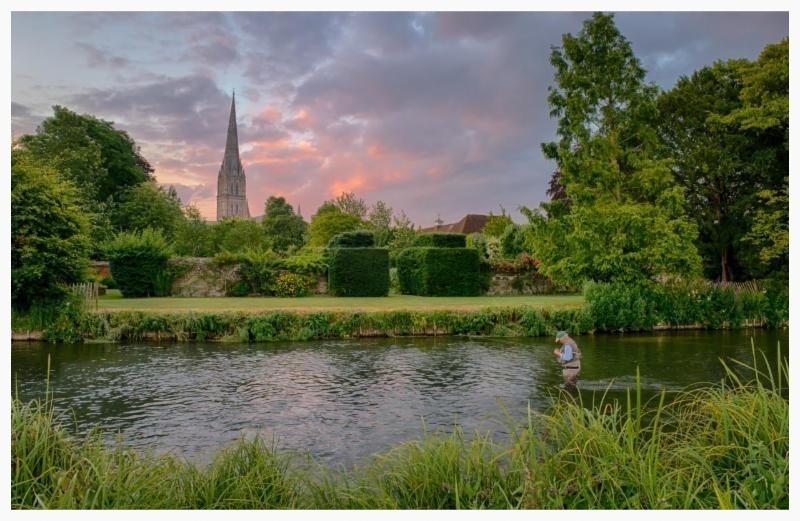 Salisbury Cathedral at dawn no. 1