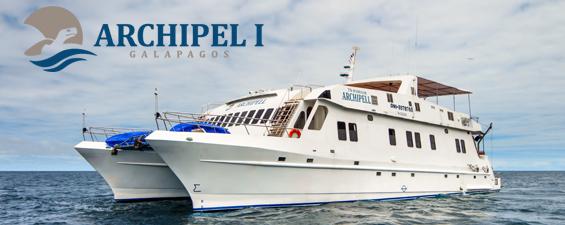85172a46 589f 4cf8 bd83 e0a9b01f8b3f - Birdwatching Galapagos Cruises