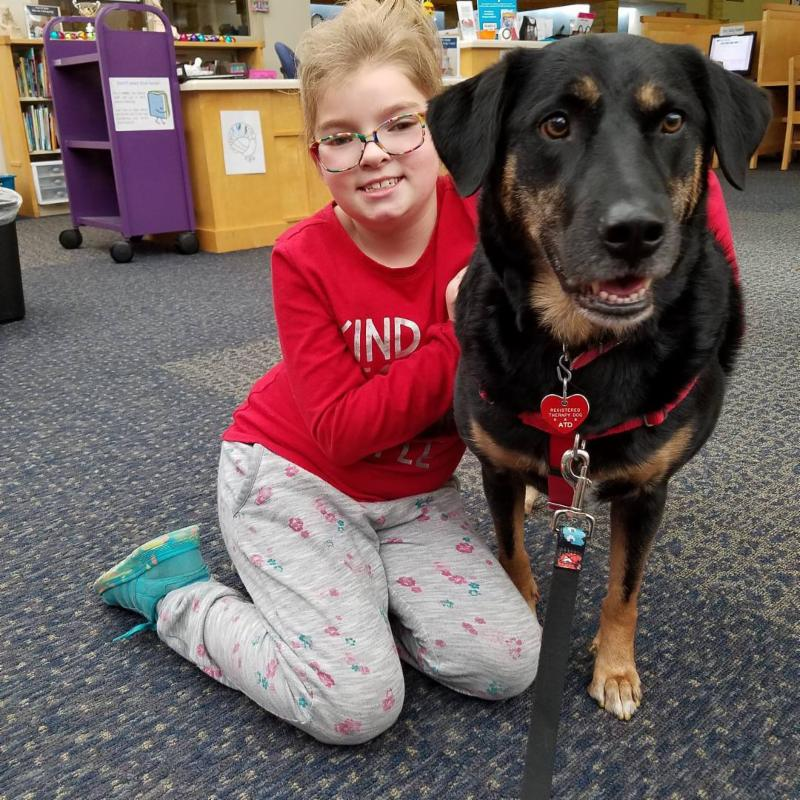 Liberty the Therapy Dog