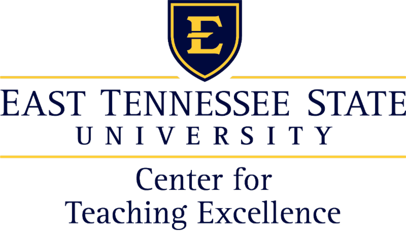 Center for Teaching Excellence logo
