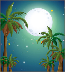 moon and palm trees
