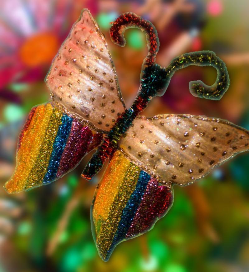 Festival butterfly